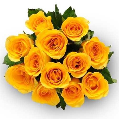12_yellow_roses_bunch-500x500-1.jpg